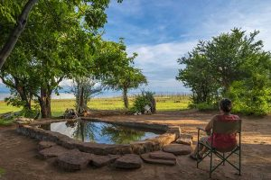 rhino-safari-camp-splash-pool