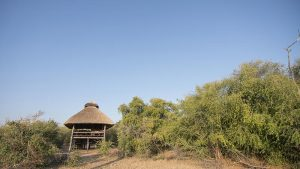 rhino-safari-camp-room-nestled-in-the-jesse