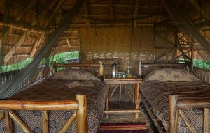 rhino-safari-camp-rooms-twin-beds