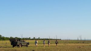 rhino-safari-camp-game-drives9