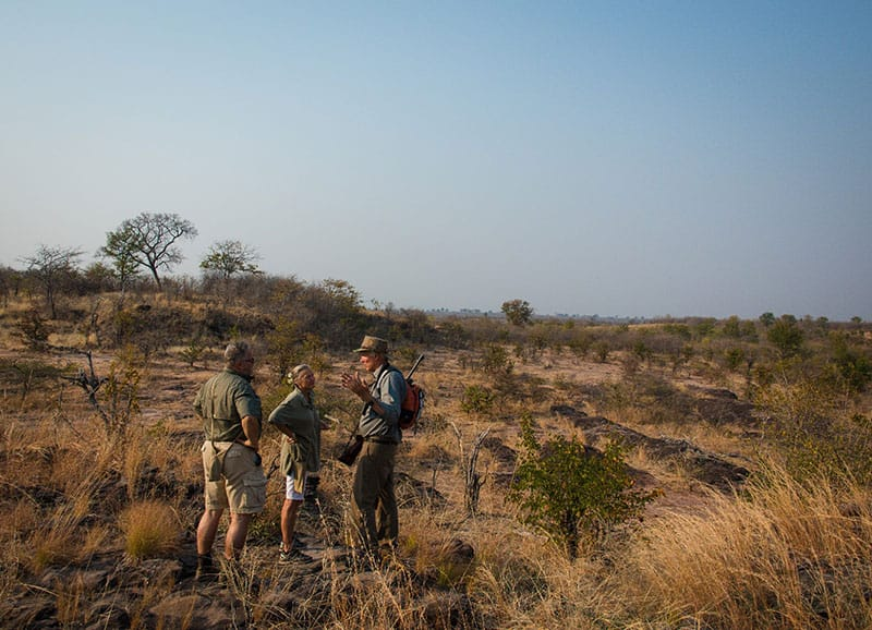 rhino-safari-camp-guided-bush-walks5