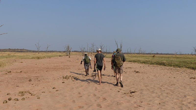 rhino-safari-camp-guided-bush-walks6