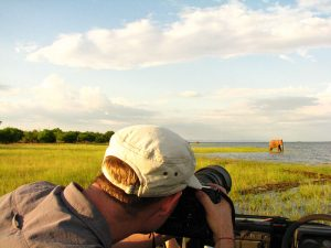 rhino-safari-camp-photographic-safari